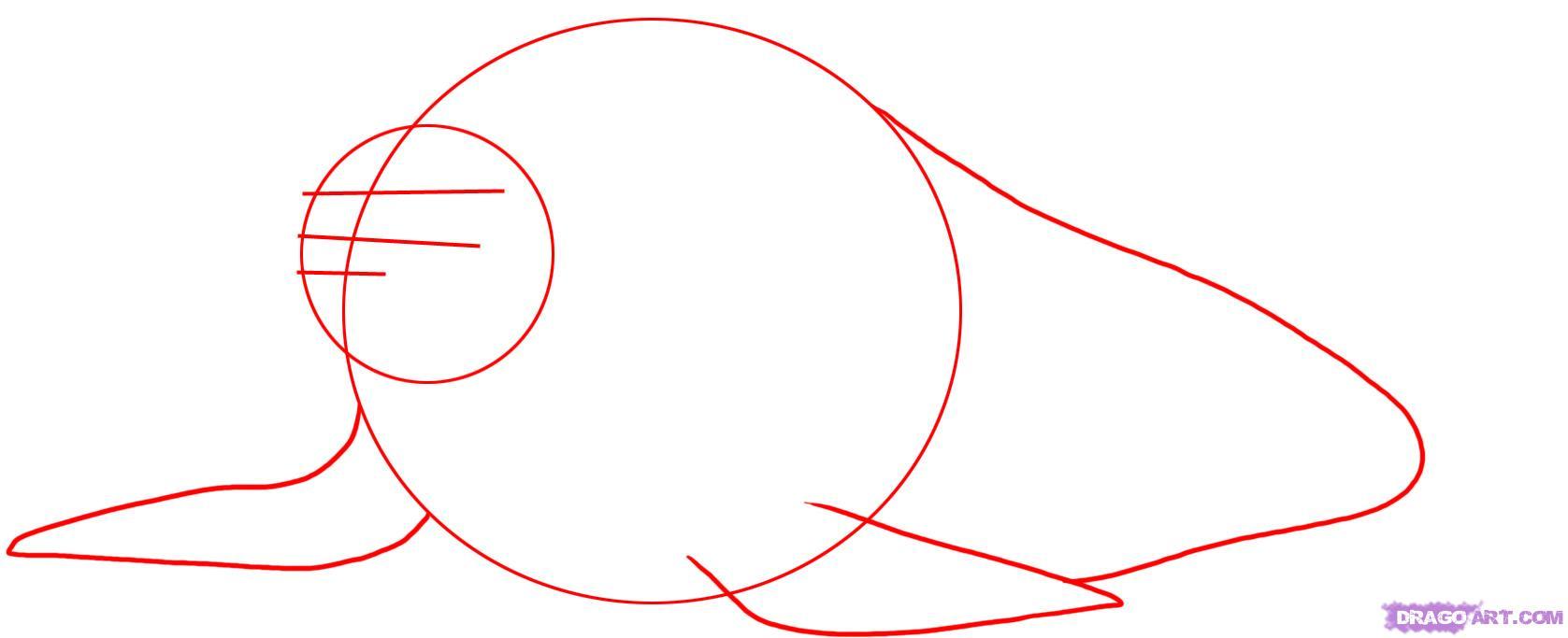 Рисуем моржа - шаг 1