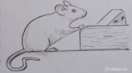 Рисуем мышку - фото 3