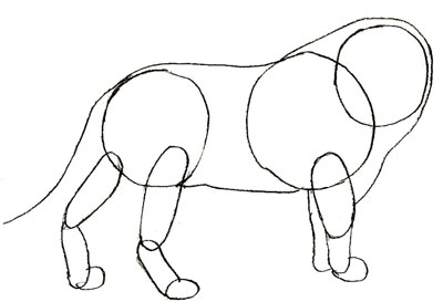 Как просто нарисовать льва - фото 3