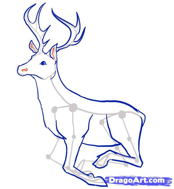 Рисуем оленя - шаг 7