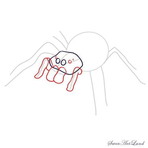 Рисуем паука-птицееда - шаг 5