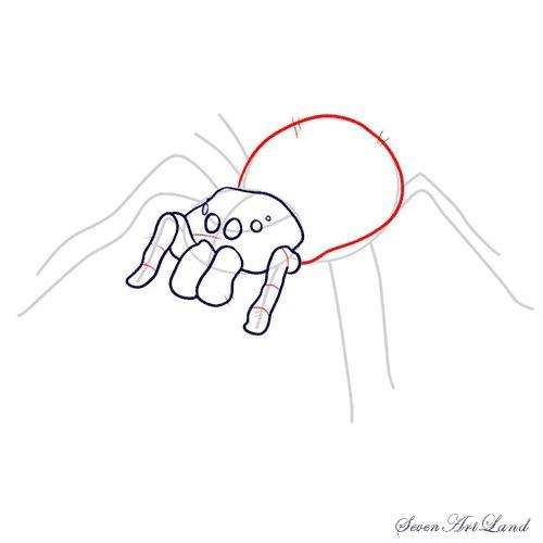 Рисуем паука-птицееда - шаг 6