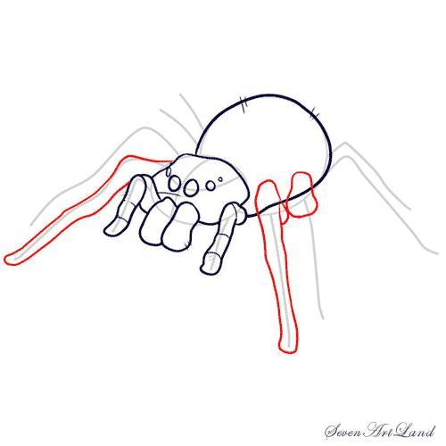 Рисуем паука-птицееда - шаг 7