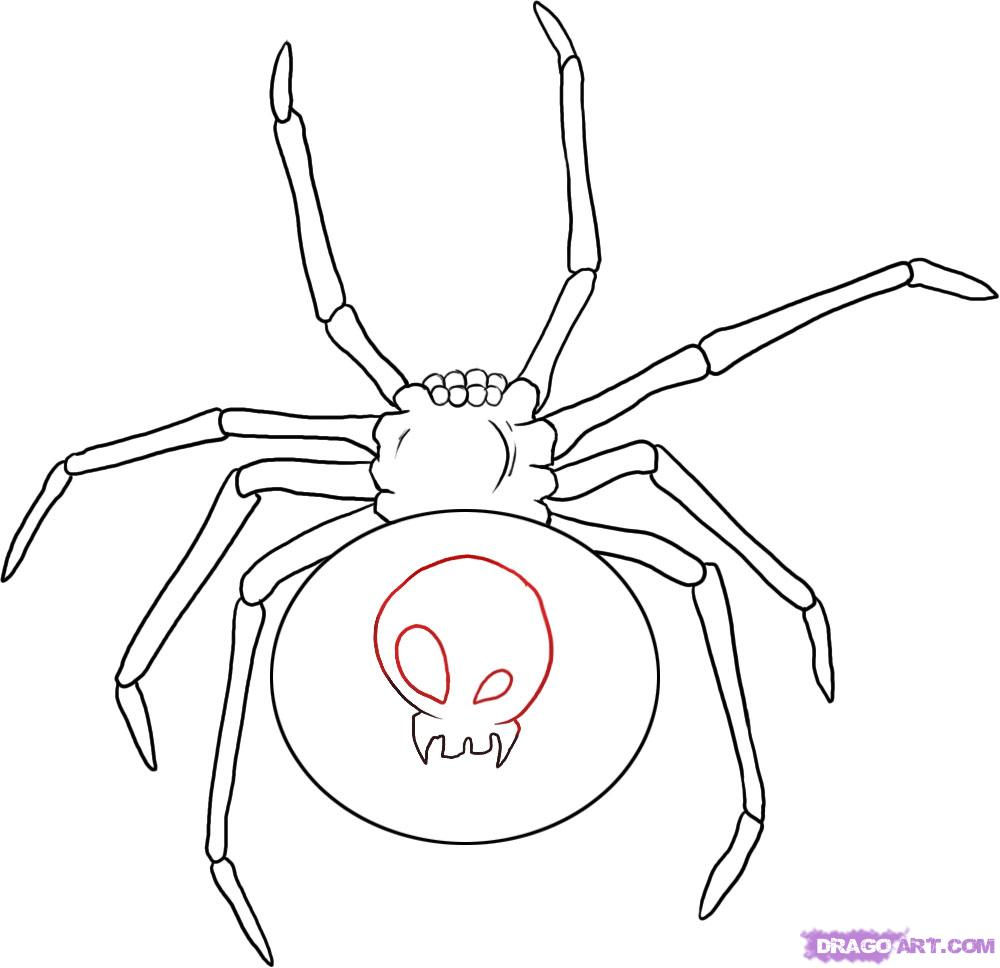 Рисуем паука Черная вдова - шаг 4