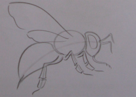 Рисуем пчелу - шаг 2