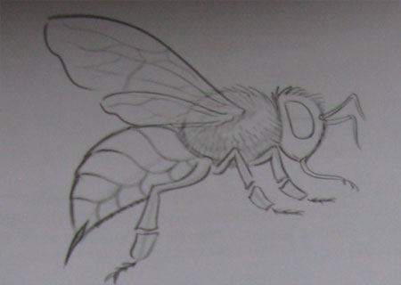 Рисуем пчелу - шаг 3