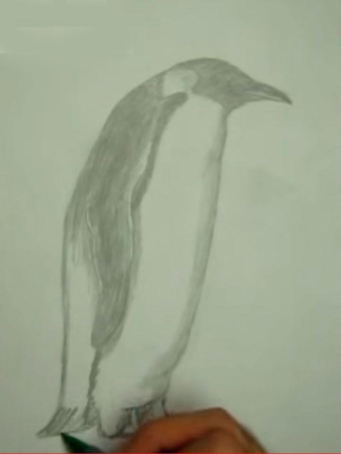 Как просто нарисовать пингвина - шаг 5