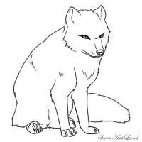 Как нарисовать полярную Лисицу карандашом поэтапно