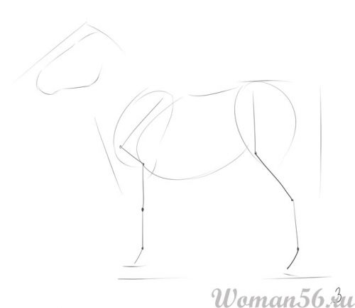 Рисуем пони лошадь - шаг 3