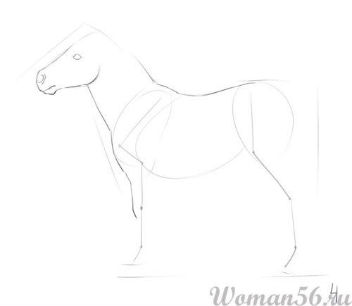 Рисуем пони лошадь - шаг 4