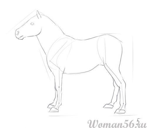 Рисуем пони лошадь - шаг 5