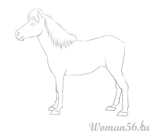 Рисуем пони лошадь - шаг 6