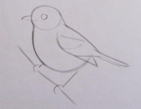 Рисуем воробья на ветке - фото 2