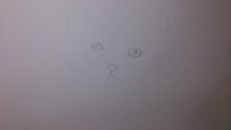 Рисуем пушистого котенка цветными карандашами - шаг 1