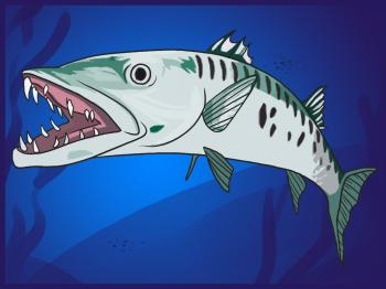 Рисуем рыбу Барракуда