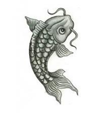 Как нарисовать рыбу карп карандашом поэтапно