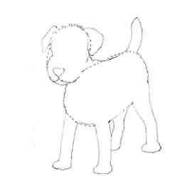 Рисуем щенка карандашами - шаг 2