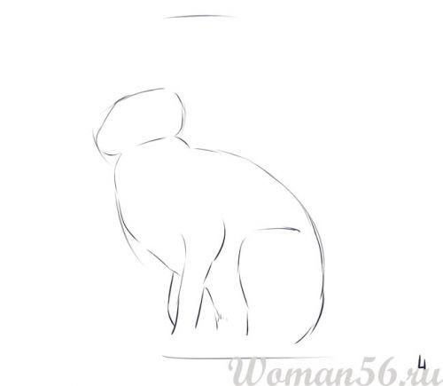 Рисуем сидящего зайца - шаг 4