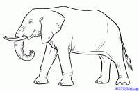 слона карандашом