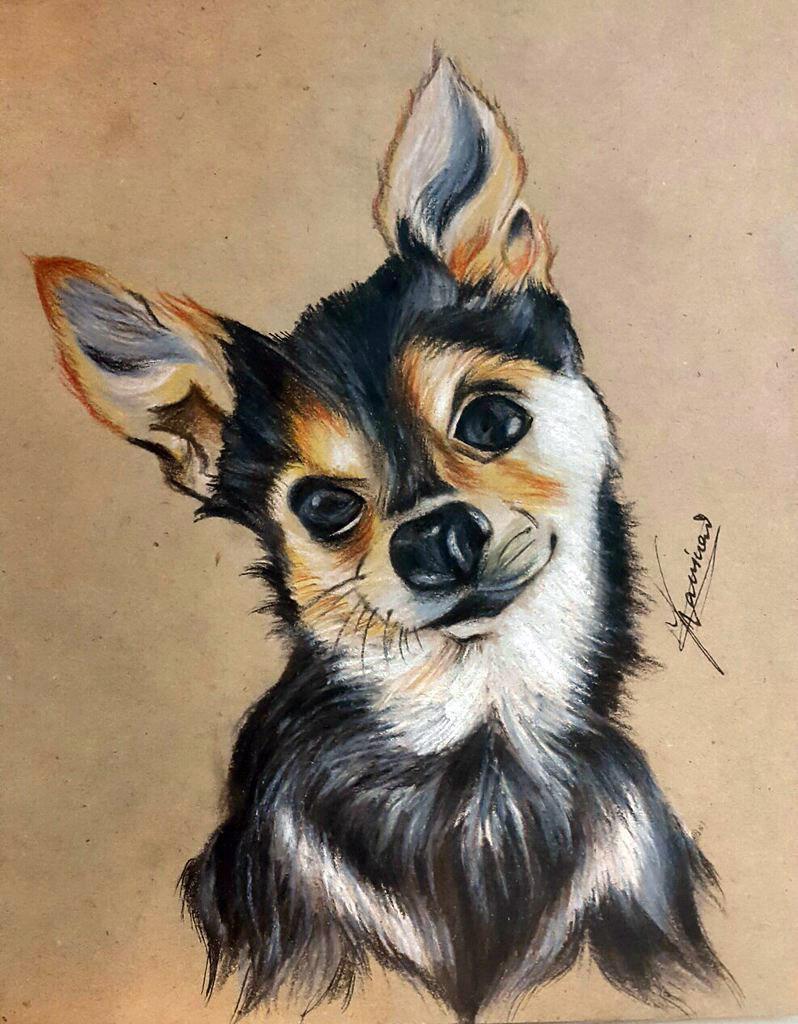 Как нарисовать собачку по сетке цветными акварельными карандашами поэтапно