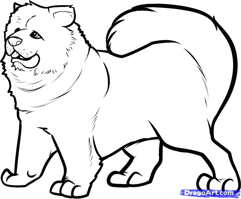 Как нарисовать собаку породы