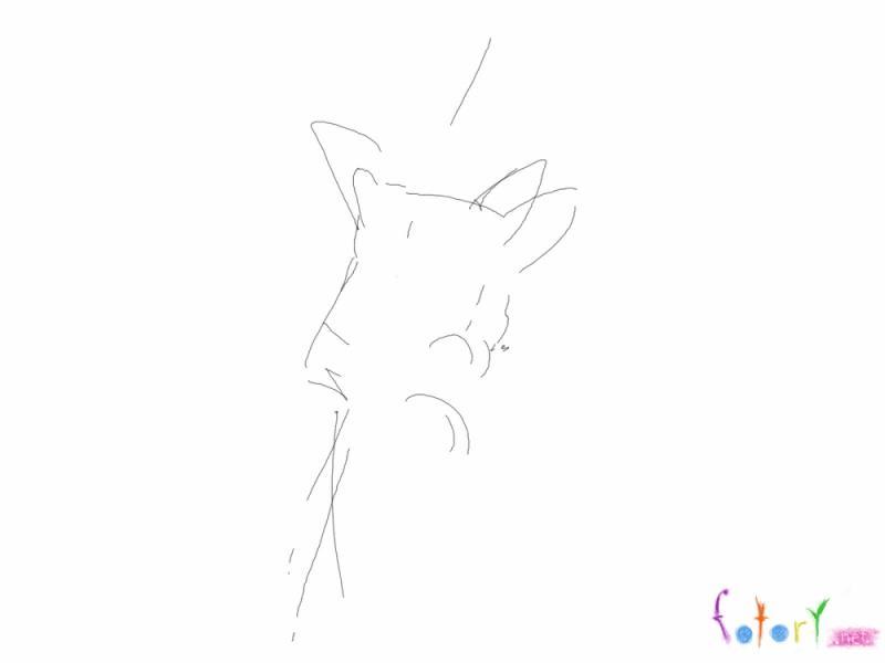 Рисуем собаку чихуахуа в кармане - шаг 1