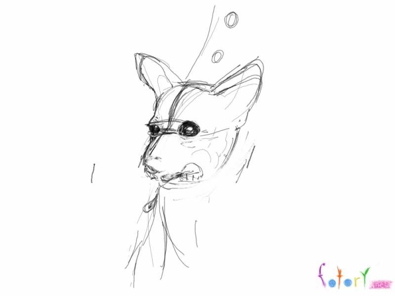 Рисуем собаку чихуахуа в кармане - шаг 2