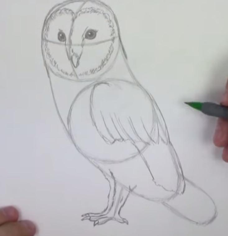 Рисуем сову - шаг 4