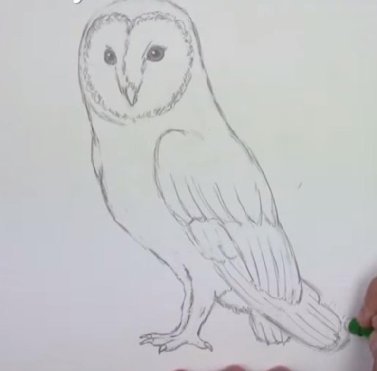 Рисуем сову - шаг 5