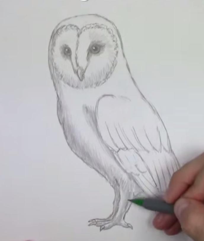 Рисуем сову - шаг 6