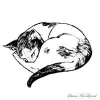 Фото Спящую <u>пошагово</u> кошку карандашом