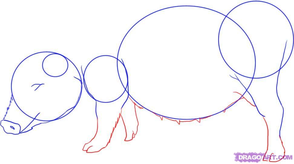 Рисуем свинью - фото 3