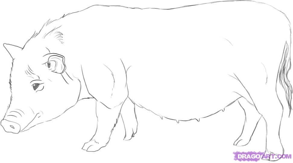 Рисуем свинью - фото 6