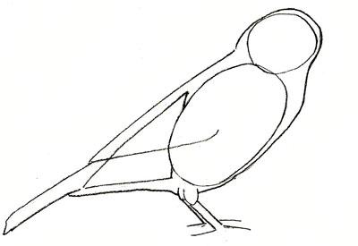 Рисуем воробья - шаг 3