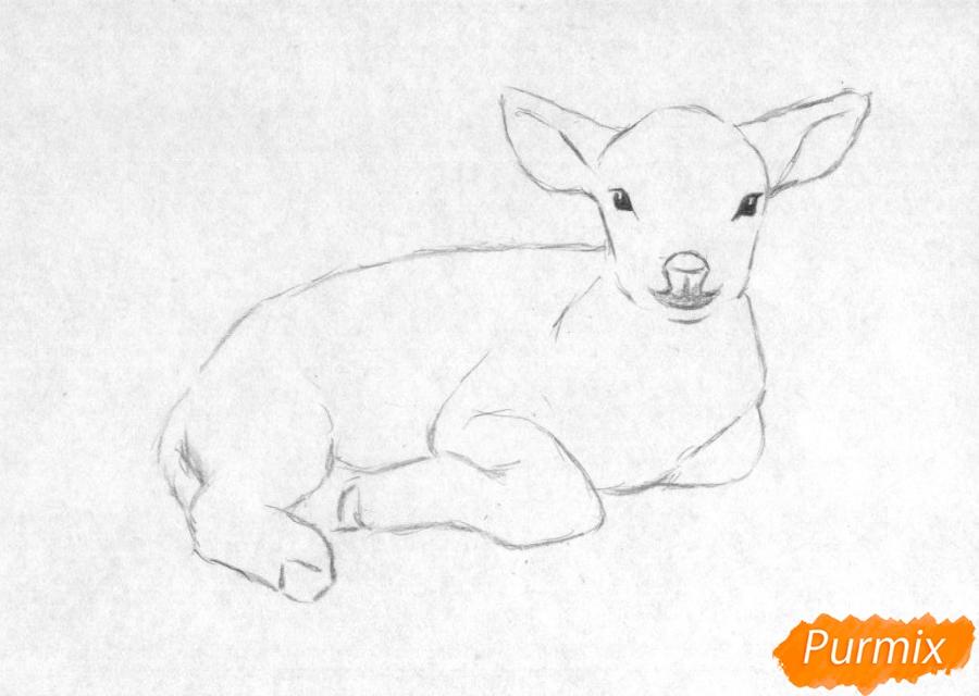 Рисуем ягнёнка простыми карандашами и чёрной ручкой - шаг 1
