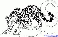 Как нарисовать Ягуара карандашом поэтапно