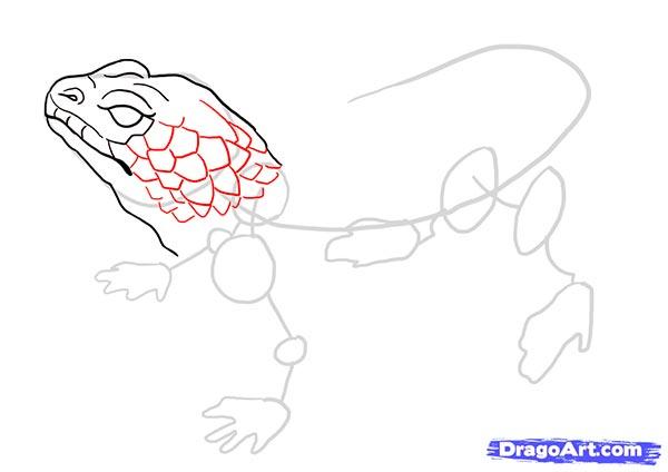 Как нарисовать ящерицу карандашом