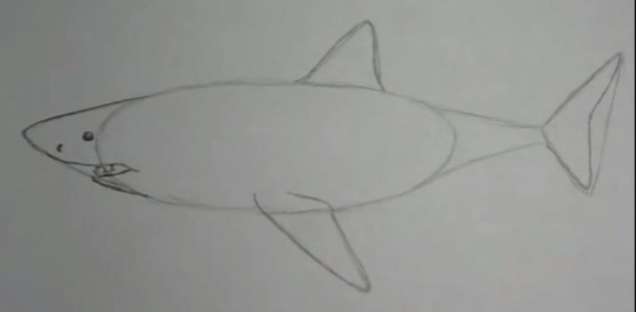 Учимся рисовать акулу - шаг 3