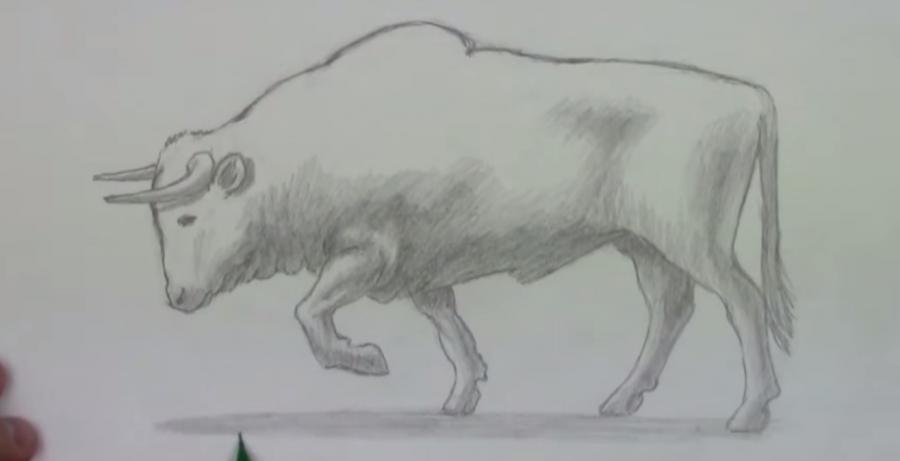 Рисуем быка - фото 5
