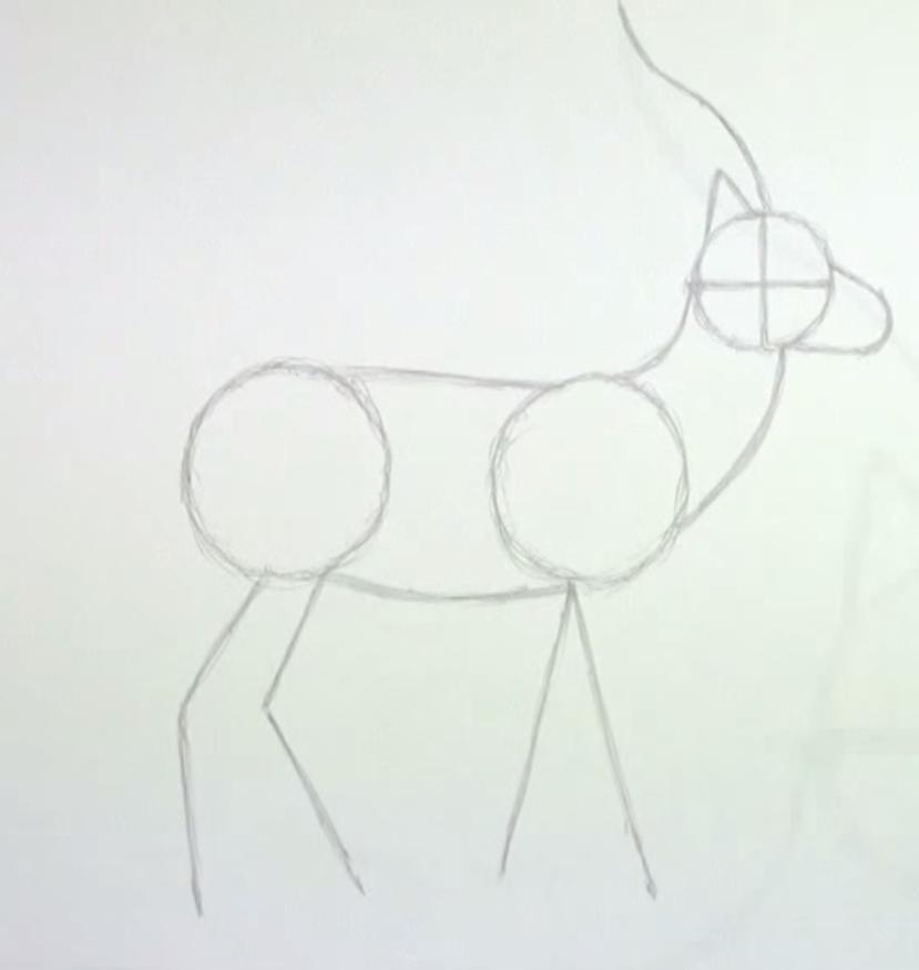 Как животное газель в полный рост - шаг 2
