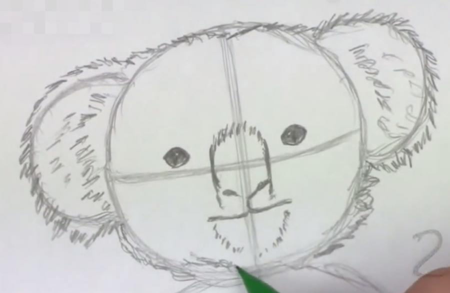 Рисуем коалу   для начинающих - шаг 2