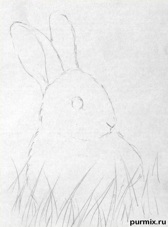 Рисуем кролика в траве - шаг 1