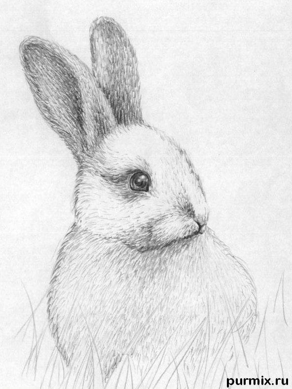 Рисуем кролика в траве - шаг 4