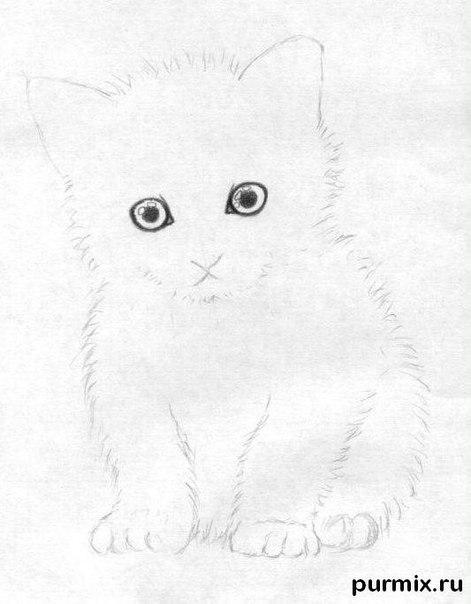 Рисуем маленького котенка простым - шаг 4