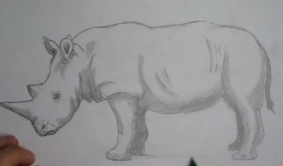 Рисуем носорога простым - шаг 5