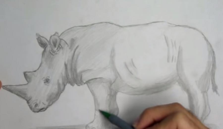 Рисуем носорога простым - шаг 6
