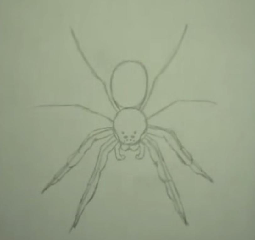 Как научиться рисовать паука простым - шаг 3