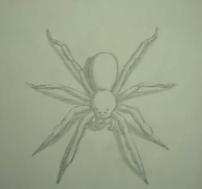 Как научиться рисовать паука простым - шаг 6