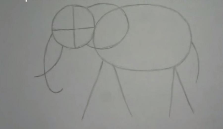 Как научиться рисовать слона простым карандашом поэтапно
