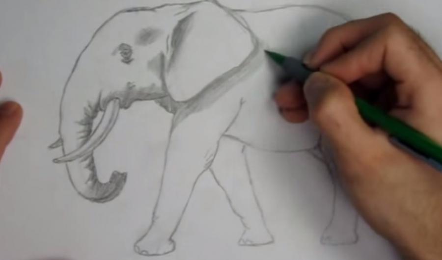 Как просто нарисовать слона - шаг 4